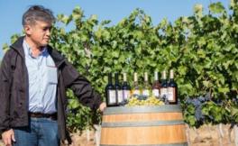 保加利亚葡萄酒深受日本消费者青睐