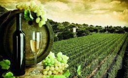 智利赤霞珠红葡萄酒价格多少钱