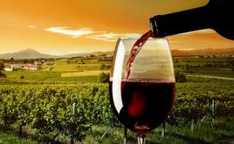 大火吞噬加州酒庄,葡萄酒一定会涨价?