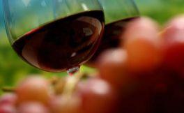 龙徽特选干红怎么喝?正确喝红酒才健康