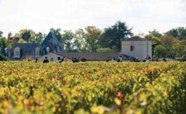 活灵魂酒庄(Almaviva Winery)
