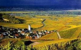 布洛赛酒庄(Broadside Wines)