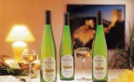 德国就只有雷司令葡萄酒吗?