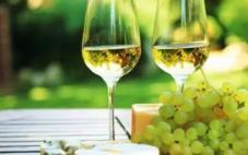 白葡萄酒怎么喝?白葡萄酒配什么好喝?
