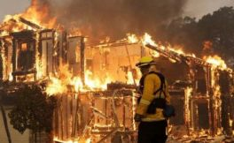 加州森林大火对当地葡萄酒行业的真正影响是什么?