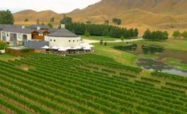 新西兰VS澳洲,一定要争夺葡萄酒出口量NO.1的宝座吗?
