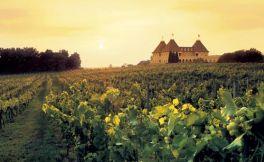 法国安茹(Anjou)产区