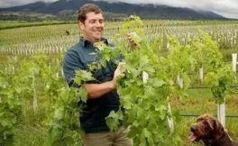 2017-2018财年澳洲葡萄酒出口量将超过8亿升