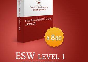 ESW初级【广州云徕】