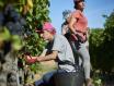 橡树河畔酒庄(La Rioja Alta S.A.)
