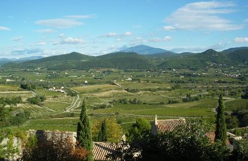 法国拉斯多(Rasteau)产区