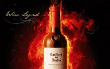 带你了解7大智利红酒品牌