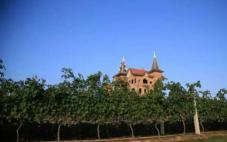 喜悦酒庄(Joie Farm Winery)