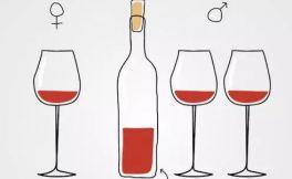 酒窖里面的酒石酸是什么?