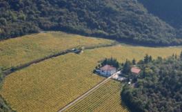 法拉利酒庄(Ferrari)