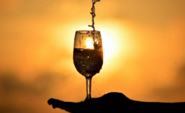 Wine是葡萄酒Or酱油,你的葡萄酒买对了吗