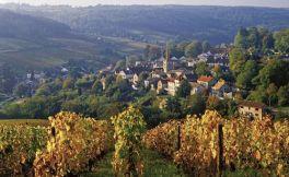 勃艮第新增两个AOC葡萄酒产区:弗泽莱村级AOC和勃艮第金丘大区级AOC