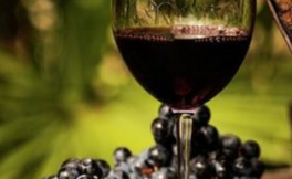 首家俄罗斯美食常设展厅设在上海,届时将会展示葡萄酒