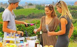 法国郎格多克红葡萄酒价格参考表