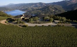 LVMH集团收购加州纳帕谷寇金酒庄