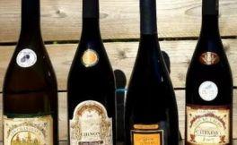 杰西斯·罗宾逊:哪里有耐陈年,高性价比又宜搭配美食的酒?