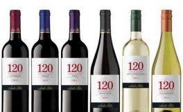 南美的明日之星--智利葡萄酒文化