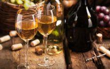 酵母菌——葡萄酒的酿造中的重要角色