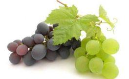 健康饮用葡萄酒 葡萄酒皮的特殊功效