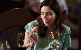 葡萄酒闻香很重要,那你知道葡萄酒都有哪些香气吗?