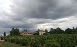 法国普罗旺斯葡萄酒九大产区介绍