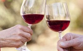 葡萄酒鉴别真的那么难吗?那你是不会