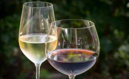 今年前九个月葡萄牙葡萄酒出口额增长8.5%