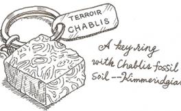 林殿理:夏布利的矿石味