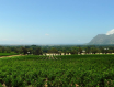 卡塞拉酒庄(Casella Wines)