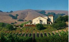宝石酒庄(Cape Diamond Wines)