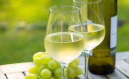 为什么用白葡萄酒配海鲜?今天才知道!