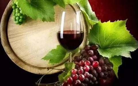 葡萄酒的做法之自酿葡萄酒的过程