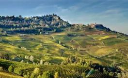 巴罗洛产区协会计划申请增加30公顷葡萄园,却遭到意大利农户联盟抵制