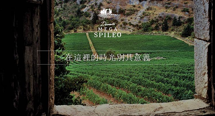 上海MEGA SPILEO大洞庄园希腊高端酒品鉴会