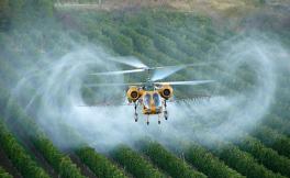 明年欧盟成员国仍然可以使用除草剂草甘膦