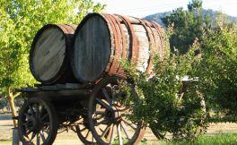斯诺溪酒庄(Snobs Creek Wines)