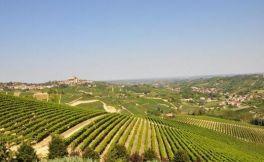 凯胜泰利酒庄(Castellare Di Castellina)