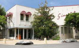 吉娜斯集团(Maison  Ginestet)