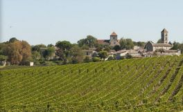 圣乔治酒庄(Chateau Saint Georges Cote Pavie)