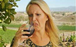 你真觉得酒精度越高的葡萄酒质量更好,更值钱吗?