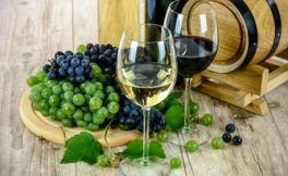 林殿理:葡萄酒之友