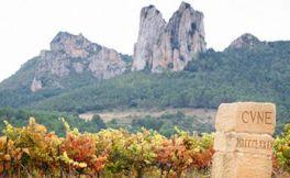 喜悦葡萄酒集团(Compania Vinicola del Norte de Espana)