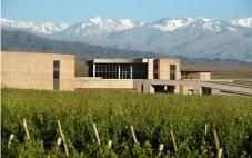 安第斯台阶酒庄(Terrazas de los Andes)