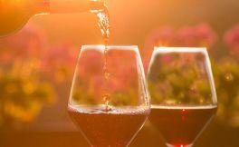 德国还有这些稀有的红葡萄品种,你听说过吗?