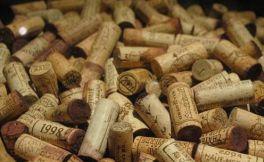 了解葡萄酒,先从瓶塞开始...